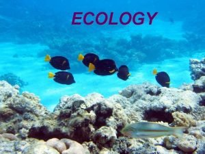 ECOLOGY Syllabus links What is ecology Ecology is