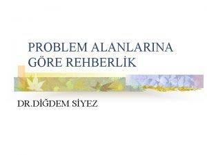 PROBLEM ALANLARINA GRE REHBERLK DR DDEM SYEZ KiiselSosyal