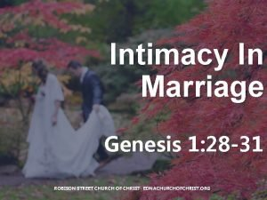 Intimacy In Marriage Genesis 1 28 31 ROBISON