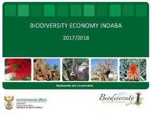 BIODIVERSITY ECONOMY INDABA 20172018 Biodiversity and Conservation Presentation