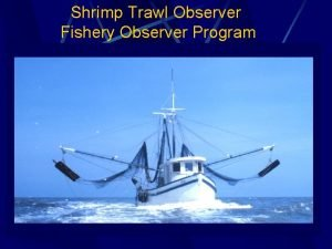 Shrimp Trawl Observer Fishery Observer Program Cooperative Research