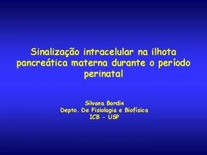 Sinalizao intracelular na ilhota pancretica materna durante o
