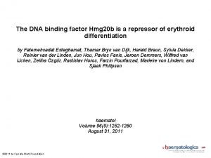 The DNA binding factor Hmg 20 b is
