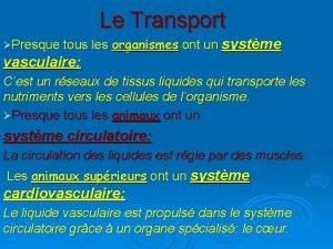 Le Transport Presque tous les organismes ont un