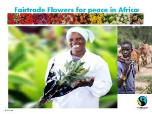 Fairtrade Flowers for peace in Africa Fairtrade 2010