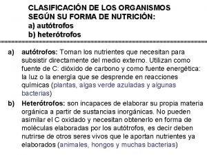 CLASIFICACIN DE LOS ORGANISMOS SEGN SU FORMA DE