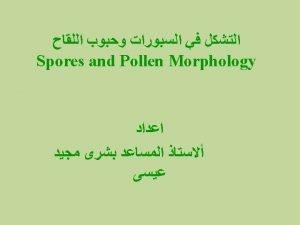 Pollen polarity Pollen polarity refers to the position