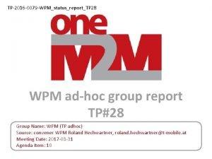 TP2016 0079 WPMstatusreportTP 28 WPM adhoc group report