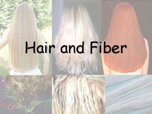 Hair and Fiber Hair Evidence From hair one