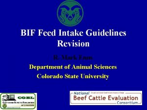 BIF Feed Intake Guidelines Revision R Mark Enns