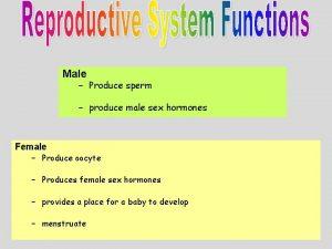 Male Produce sperm produce male sex hormones Female