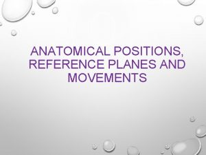 ANATOMICAL POSITIONS REFERENCE PLANES AND MOVEMENTS ANATOMICAL POSITIONS