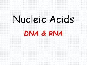 Nucleic Acids DNA RNA Nucleic Acids Nucleic acids