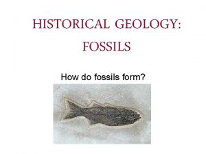 HISTORICAL GEOLOGY FOSSILS How do fossils form What
