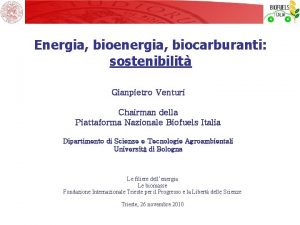 Energia bioenergia biocarburanti sostenibilit Gianpietro Venturi Chairman della