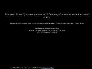 Pancreatic Protein Tyrosine Phosphatase 1 B Deficiency Exacerbates