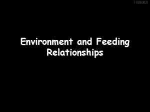 11032021 Environment and Feeding Relationships Adaptation 11032021 Organisms
