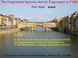 The Compressed Baryonic Matter Experiment at FAIR Peter