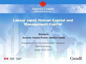 Labour Input Human Capital and Management Capital Wulong