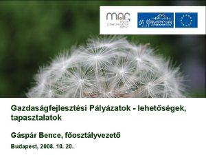 Gazdasgfejlesztsi Plyzatok lehetsgek tapasztalatok Gspr Bence fosztlyvezet Budapest