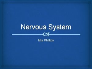 Nervous System Mia Phillips Nervous Systems Central the