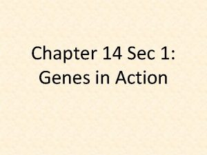 Chapter 14 Sec 1 Genes in Action Mutation