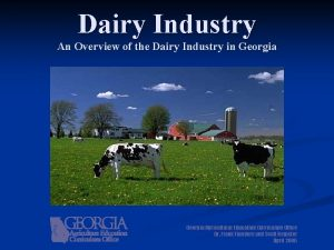 Dairy Industry An Overview of the Dairy Industry