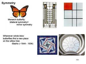 Symmetry Monarch butterfly bilateral symmetry mirror symmetry Whenever