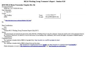 802 16 Working Group Treasurers Report Session 110