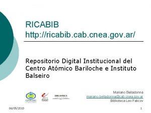 RICABIB http ricabib cab cnea gov ar Repositorio