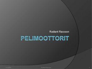 Radiant Raccoon PELIMOOTTORIT 11 3 2021 Radiant Raccoon
