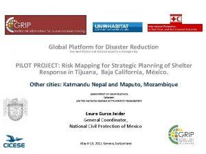 Global Platform for Disaster Reduction Risk Identification and