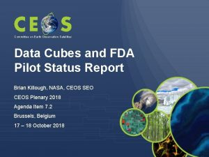 Committee on Earth Observation Satellites Data Cubes and