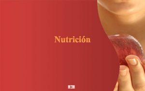 Nutricin Indice Definicin de nutricin Importancia Factores Tipos