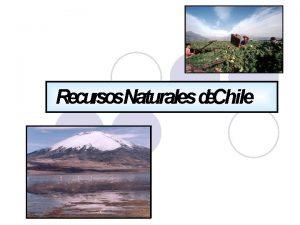 Recursos Naturales de Chile Los Recursos Naturales Definicin
