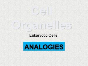 Cell Organelles Eukaryotic Cells Cell Parts Cells the