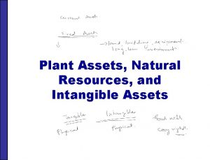 Plant Assets Natural Resources and Intangible Assets PLANT