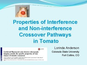 Properties of Interference and Noninterference Crossover Pathways in