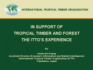 INTERNATIONAL TROPICAL TIMBER ORGANIZATION IN SUPPORT OF TROPICAL