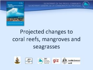 Projected changes to coral reefs mangroves and seagrasses