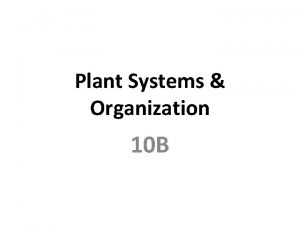 Plant Systems Organization 10 B Specialized Cells Guard