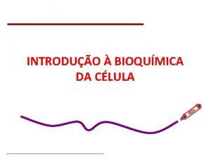 INTRODUO BIOQUMICA DA CLULA Bioqumica Celular Prof Jnior