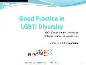 Developing professionals Strengthening organisations Good Practice in LGBTI