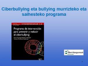 Ciberbullying eta bullying murrizteko eta saihesteko programa 1