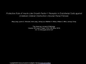 Protective Role of InsulinLike Growth Factor1 Receptor in