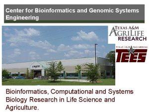 Center for Bioinformatics and Genomic Systems Engineering Bioinformatics