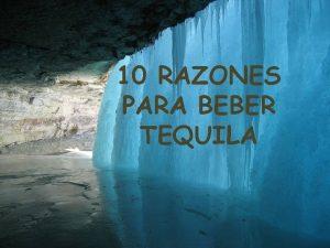 10 RAZONES PARA BEBER TEQUILA Ballena blanca Aeropuerto