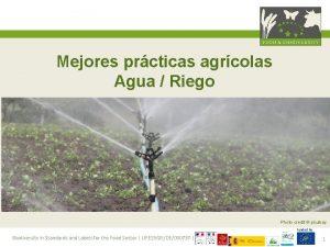 Mejores prcticas agrcolas Agua Riego Photo credit pixabay