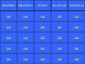 MONERA PROTISTA FUNGI PLANTAE ANIMALIA 1 pt 1