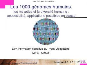 Les 1000 gnomes humains Les 1000 gnomes humains